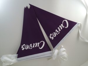 Blue and White Bunting for Curves Product Promotion